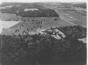 Part of Freteval Forest and the Farm